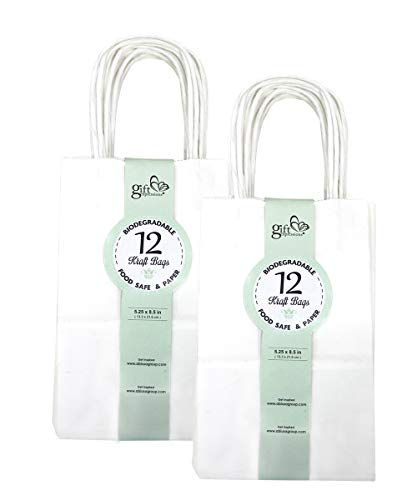 GIFT EXPRESSIONS White Kraft Paper Bags, Kraft Gift Bag, Premium Quality Paper (Sturdy & Thicker), Biodegradable, Party Bags, Shopping Bag, Kraft Bags (24 CT Small, White) -