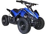 Big Toys USA MotoTec 24v Mini Quad v2 - Blue