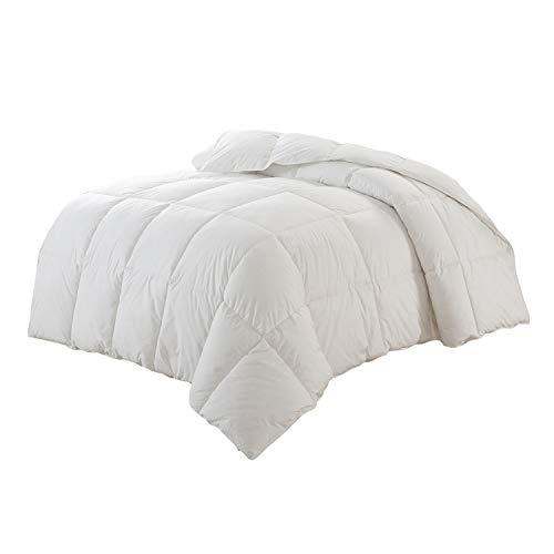 Christies Home Living Polyester Warmth King Down Alternative Comforter Duvet Insert, White ()