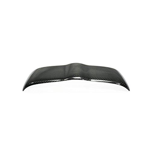 Carbon Fiber Lip 350z - 8