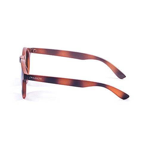 9 Mixte P72003 Soleil Vert Lunette de Paloalto Adulte Sunglasses 4fpqxwpP