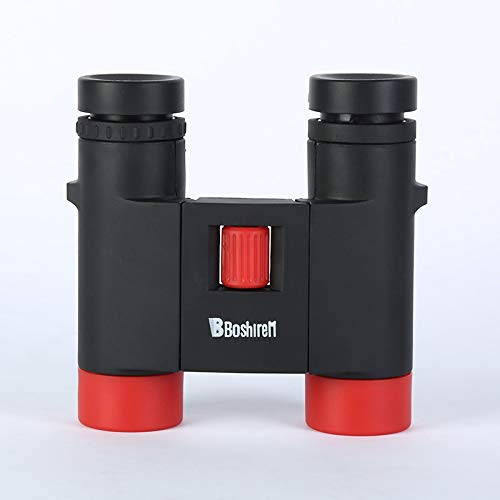 RYRYBH Fashionable and Convenient Doctoral New Double Cylinder 10X25 High Telescope Adult Outdoor Tourism Telescope Telescope (Size : Black)