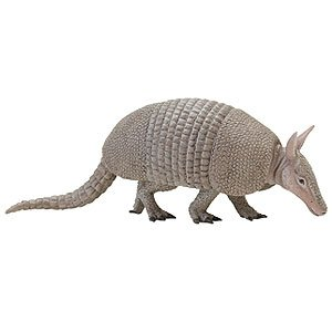 Safari Ltd  Incredible Creatures Armadillo