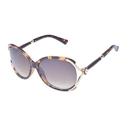 W-Q Womens Fashion Unique Design Metal Big Frame Wayfarer Sunglasses(C1) (Where Can I Buy Cat Eye Contacts)