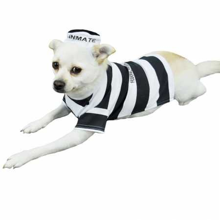 Otis and Claude Fetching Fashion Prison Pooch Costume Medium -