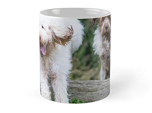 Italian Spinone Dogs In Action Annabelle And Thane Mug - 11oz Mug - Best gift for family friends