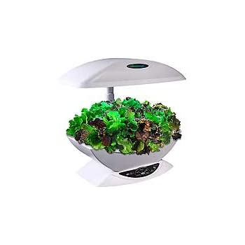 AeroGarden 7-Pod Indoor Garden with Gourmet Herb Seed Kit, White