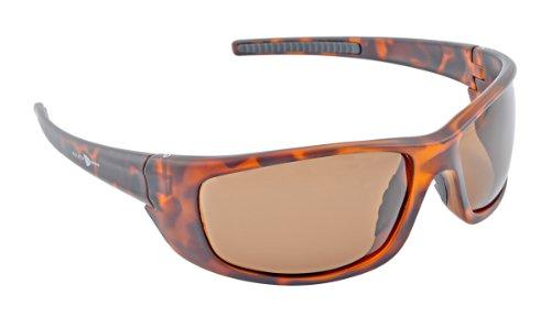 South Bend Polarized Glasses Multi-Colored