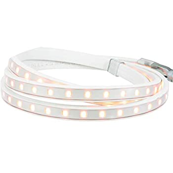 Image of Cord Reels American Lighting 120-H2-WH-MASTER 120-H2-WH Hybrid 2 LED Light Bulk Reel, 150-Feet, Dimmable with Most Standard Dimmers, 5000K Bright White Color, 120-Volt, 2.3-Watts per ft/345-Watt Max Run,