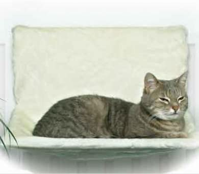Cat Deluxe – Hamaca gato Radiador cama – Pet Paradise: Amazon.es: Productos para mascotas
