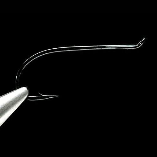 Daiichi 2421 Salmon Fly Tying Hooks (#06 (2421-06-15)) (Salmon Fly Hooks)