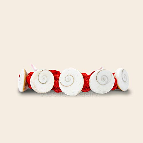 ec5df2268e Vedic Vaani Natural Gomati Chakra Shell Red Elastic Band Bracelet Blessed  with Money, Good Health