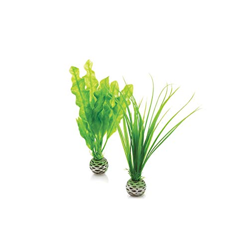 biOrb Easy Plant Pack, Small