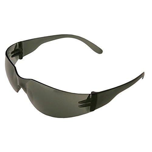 One Size ERB 17501 Safety Economy Iprotect Lens Frame Smoke
