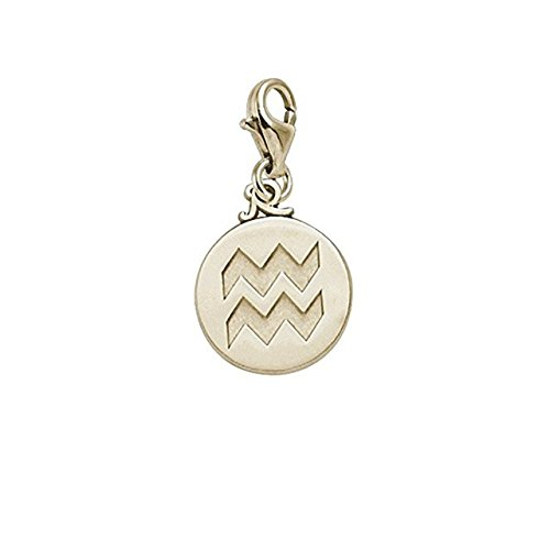 Aquarius Charm Gold Plated - Gold Plated Aquarius Charm With Lobster Claw Clasp, Charms for Bracelets and Necklaces