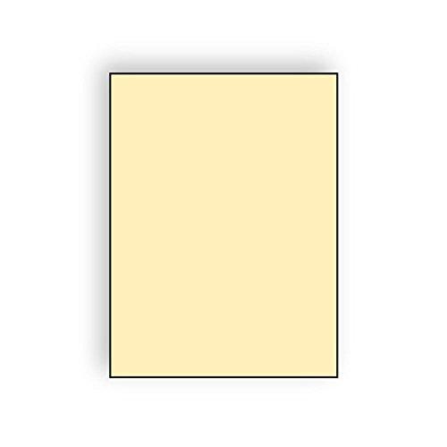 The Envelope Supplies Shop Letterhead, 8-1/2