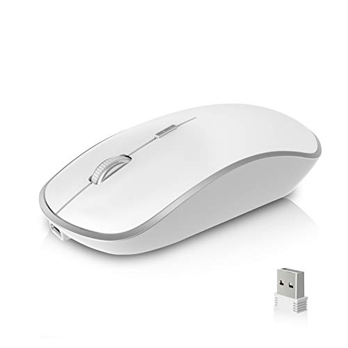 - XRF Wireless Mouse Rechargeable,2.4G Cordless Mice,Less Noise High Precision DPI 2400 Optical Mouse Compatible with Laptop,PC,Computer,Notebook-Silver White