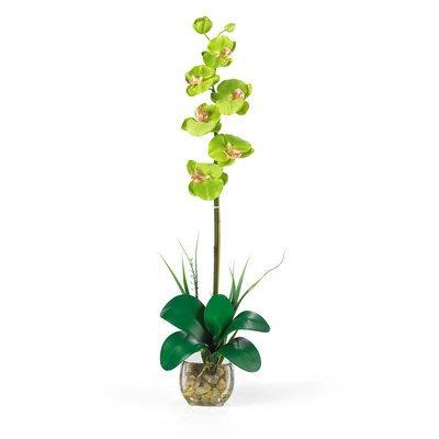 Nearly Natural Single Phalaenopsis Liquid Illusion Silk Flower (Bamboo Liquid Illusion)