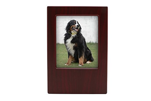 Near & Dear Pet Memorials MDF Pet Photo Cremation Urn, 200 Cubic Inch, Cherry Finish from Near & Dear Pet Memorials