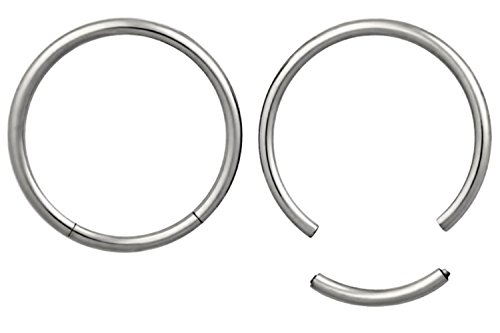 Forbidden Body Jewelry Pair of 2 Rings: 16g 1/2 Inch Surgical Steel Seamless Segment Hoop -