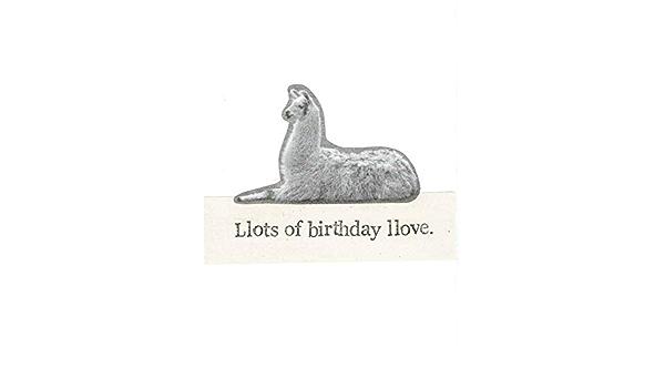 Amazon Com Llots Of Birthday Llove Funny Birthday Card Llama Animal Humor Handmade
