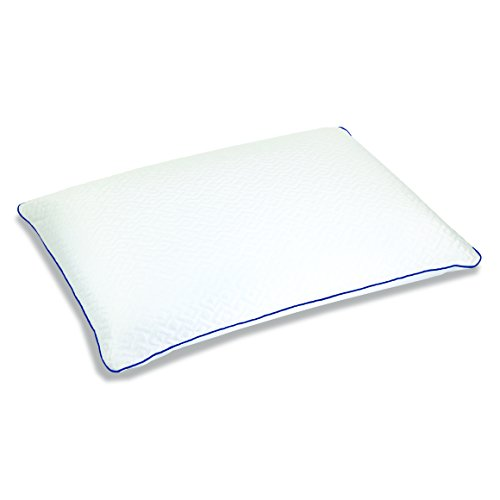 Sleep Innovations PL02490BPMC Forever Cool Gel Memory Foam Pillow