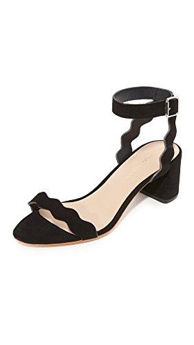 EMI Loeffler Randall Dress Sandal Women's Kid Black Suede AqFnEAzp