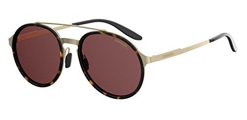 Carrera Metal Rectangular Sunglasses 53 08SO Matte Gold Palladium Havana W6 burgundy polarized lens ()