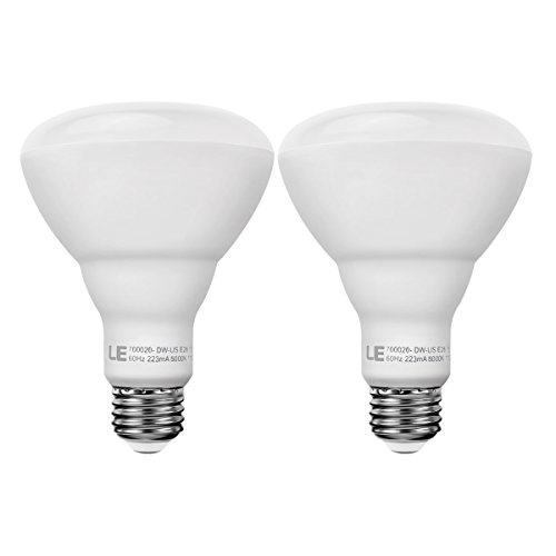 Incandescent Equivalent Dimmable Recessed Daylight