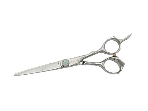 Kenchii Professional Collection EEL55 Electra 5.5'' Hair Shears / Scissors by ENVY by Kenchii