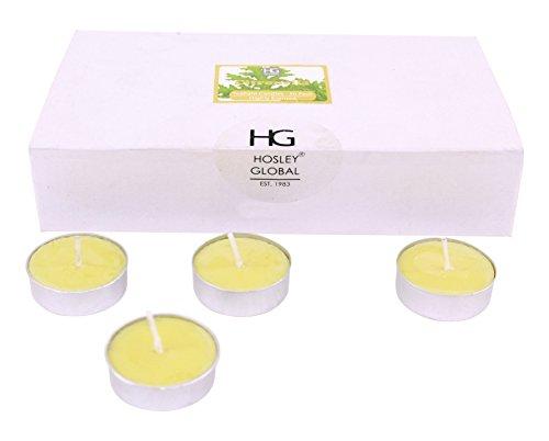 Hosley Highly Fragranced Citronella Wax Tea Light (3.81 cm x 3.81 cm x 1.27 cm, Yellow, Set of 30)