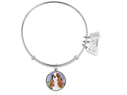 - Wind and Fire Pet Collection Expandable Bangle with Cavalier King Charles Spaniel Photo Charm Rhodium Plated Brass