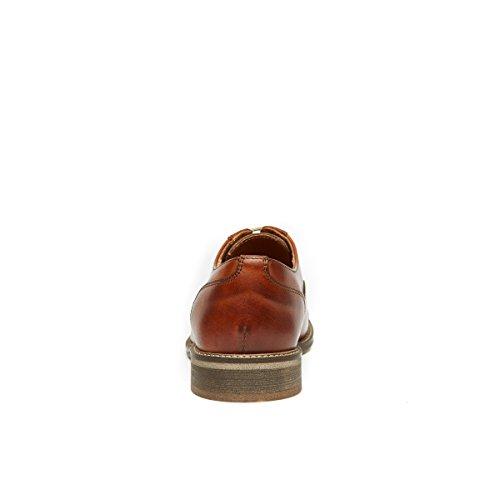 Daniel Oxford de Marron Femme Lacets Frank Chaussures Marron Pour à Ville Unp6Sf