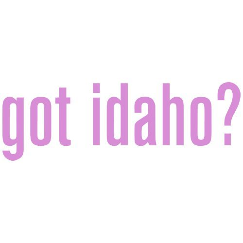 (Set of 3 - Got Idaho? Decal Sticker Color: Pink- Peel and Stick Vinyl Sticker )