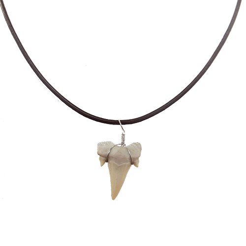 Frogsac Real Shark Tooth Necklace for Men Boys Teens Kids | Genuine Fossil Shark Tooth Pendant on Greek Leather Necklace | Mens Classic Surfer Necklace | Fashion Jewelry for Men (Bone Surfer Necklace)