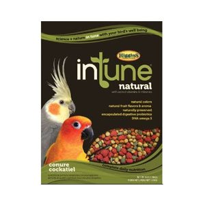 HIGGINS 466252 Higg Intune Food for Conure/Cockatiel, 40-Pound by Higgins
