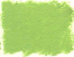 - Prismacolor NuPastel - Veronese Green