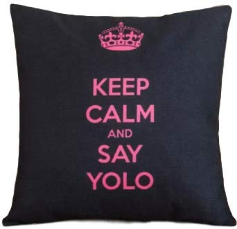 Keep Calm and Say YOLO (You Only Live Once): Perfect for
