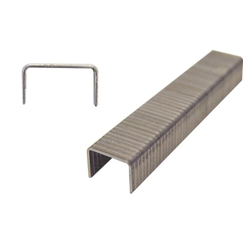 Rapid 23391100 1/4-Inch Fine Wire Staples for R19 Hammer Tacker, 5000-Pack ()