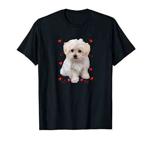 Maltese Dog Lover T-Shirts Dogs Puppies Owners Gift
