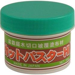 bonsai-tree-bonsai-cut-paste-spcd09-from-bonsaioutlet