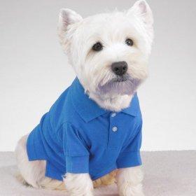 Preppy Puppy Shirts – X-SMALL – BLUE, My Pet Supplies