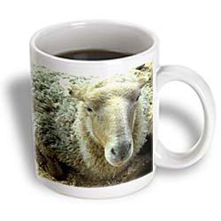 3dRose Fuzzy Sheep Ceramic Mug, ...