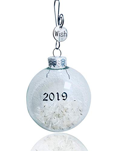 Remember Making a Wish on a Dandelion? 2019 Glass Keepsake Ornament Dandelion Wishes Gift Boxed and Card by Dorinta (Unique Baby Girl Names With Meaning 2017)