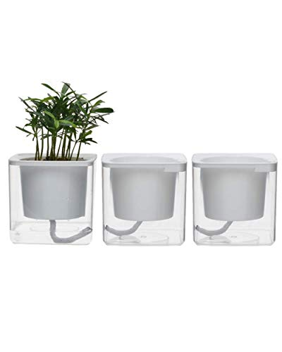 4 inch Self Watering Planter Pots Indoor Home Garden Modern Decorative Pot for Potting Small House Plants African Violet Cactus Herbs Succulents or Start Seedlings - Violet Plant House African