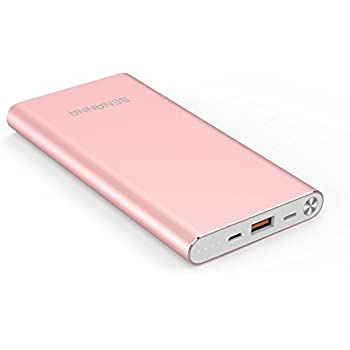 BENANNA Portable Charger 10000mAh Lightning & Micro-USB Input Power Bank External Battery Pack S1 for iPhone X 8 7 6 5 Plus iPad Android Cell Phone Samsung Galaxy Note LG Gopro - Rose Gold