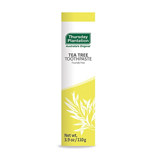 Tea Tree Toothpaste Thursday Plantation 3.9 oz Paste by Nature's - Plantation Mall
