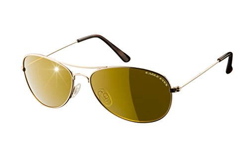 Eagle Eyes CLASSIC AVIATOR Sunglasses - Stainless Steel Frame (Gold, 54mm) , Polarized - Sunglasses Eagle Eyes