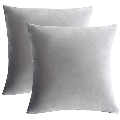 WLNUI Set of 2 Soft Velvet Solid Light Gray Decorative Square Throw Pillow Covers Set Cushion Case for Sofa Couch Home Decor 24x24 Inch 60x60 cm