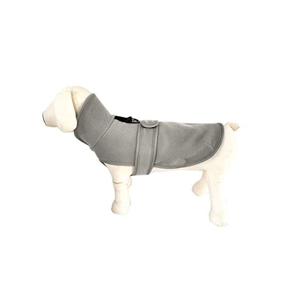 QBLEEV Small Dog Fleece Jackets Cold Weather Coats Warm Turtleneck Doggie Sweaters Vest Harness Clothes Puppy Clothes… Click on image for further info.